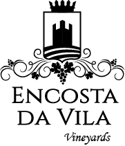 Encosta da Vila Vineyards